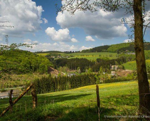 Ohlenbach im Frühling