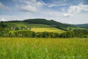 Westfeld-Ohlenbach 08