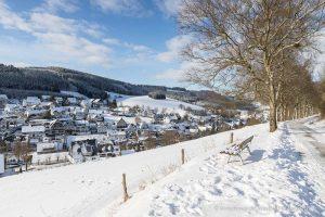 Winterlicher Blick von der Birkenallee