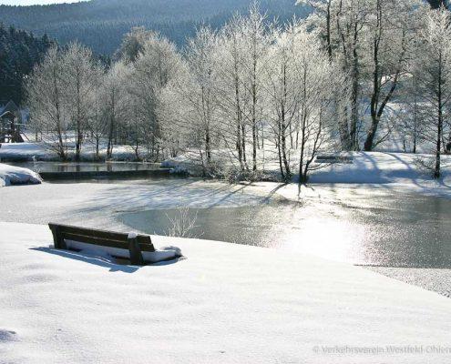 Zugefrorener Teich im großen Park