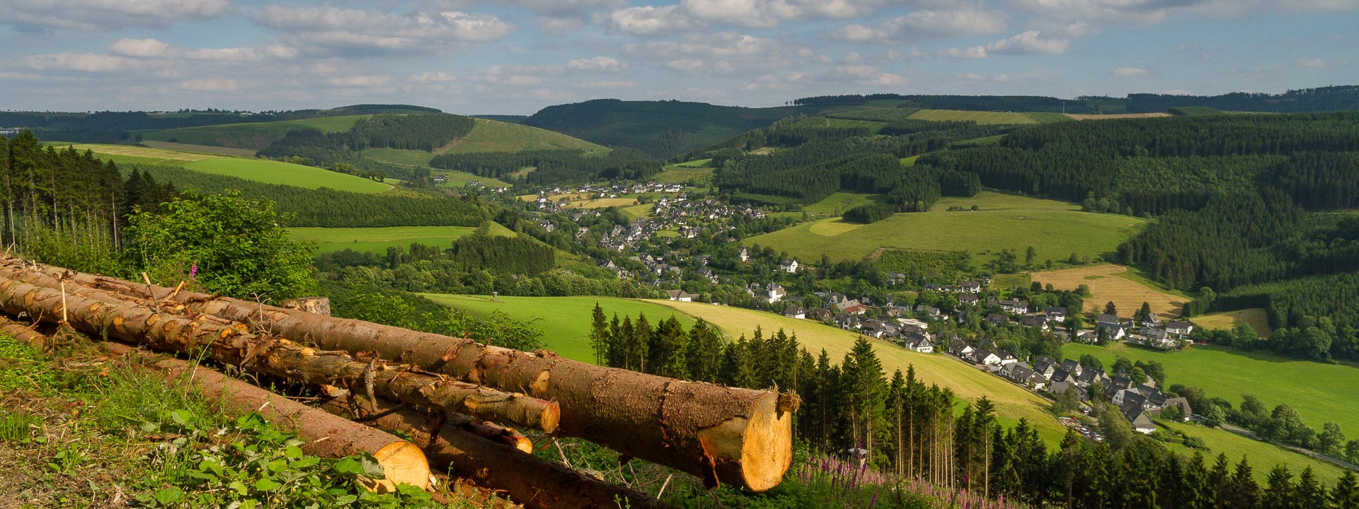 Blick vom Wesenberg auf Westfeld