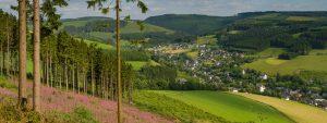 Aussicht vom Wesenberg auf Westfeld
