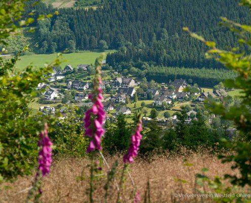 Schöne Aussicht auf Westfeld