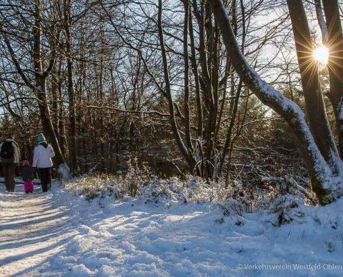 Winterwandern auf dem Kahlen Asten