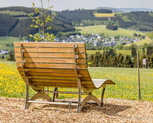 Waldsofa am Hömberg