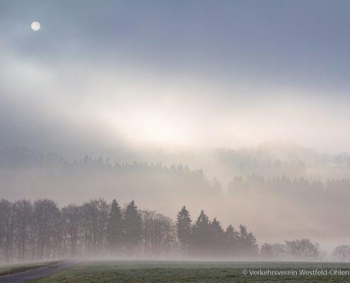 Morgenstimmung in Ohlenbach