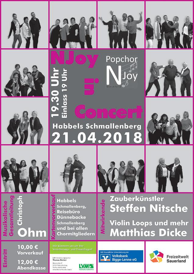 """Plakat """"NJoy in Concert"""""""