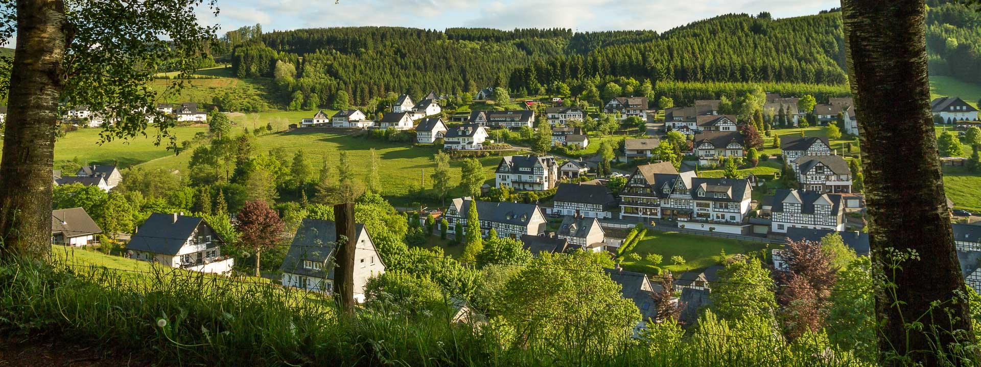 Blick von der Birkenallee auf Westfeld