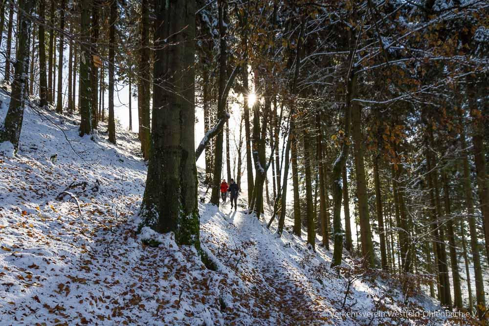 Kahler Asten-Steig am Hohen Knochen
