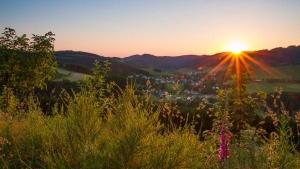 Abendliche Aussicht vom Hömberg
